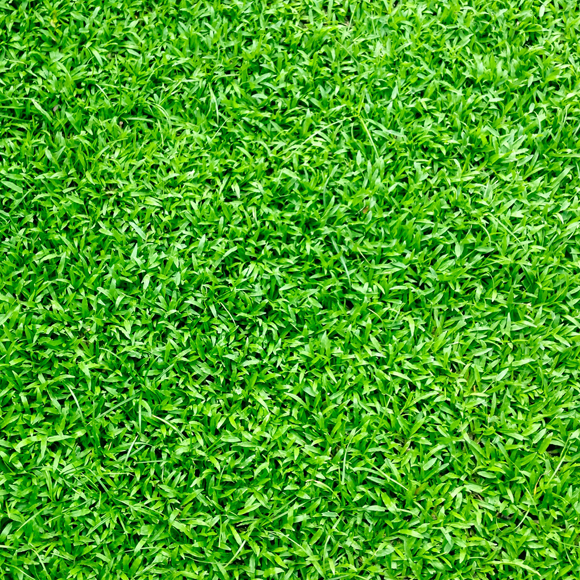 Artifical grass by Outside Space Landscaping & Design